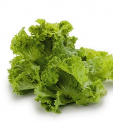 Lettuce Chinese